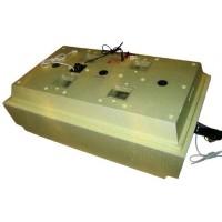 Инкубатор Золушка 98 яиц автоматический переворот, 220В/12В